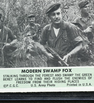 Cards Swamp Fox
