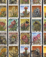 Stamps Proteas